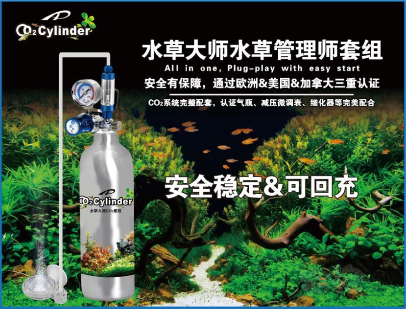 【交流】水草缸-二氧化碳重要性【浅谈篇】慎入,文字有點多-图6